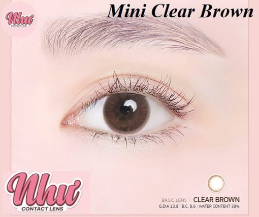 Mini Clear Brown