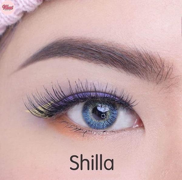 Lens shilla Blue