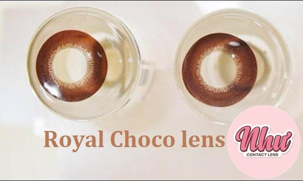 kính áp tròng royal choco