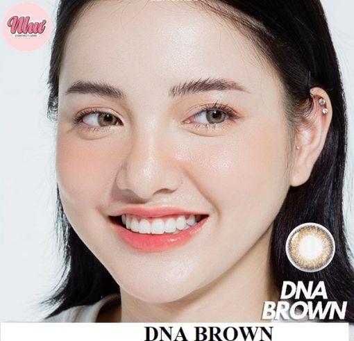 Lens DNA brown