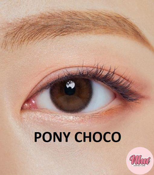 Lens Pony Choco