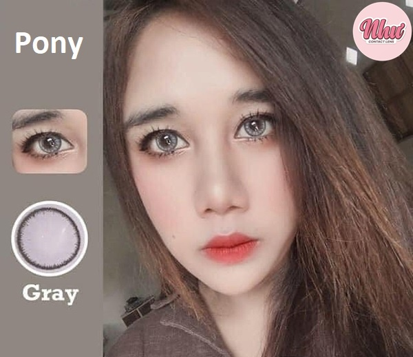 Pony gray