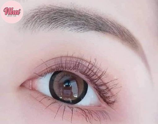 sakura brown