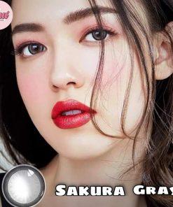 sakura gray